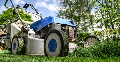 5 Ways To Reduce YardWork